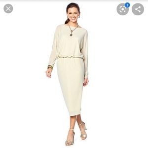 Heidi Daus Elegant Solution Blouson Dress